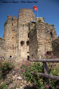 Photo donjon chateau de talmont