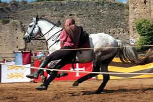 Photo cascade equestre chateau de talmont