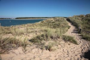 Photo chemin de dunes du veillon