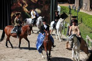 Photos cavaliers spectacles equestres haras de la vendee