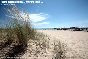 photo herbe dune saint jean de monts bord de mer
