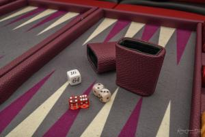Photo du videau backgammon