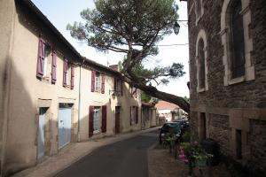 Photo arbre milieu rue clisson