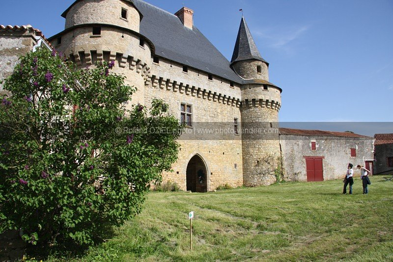 Photo Chateau de Sigournais