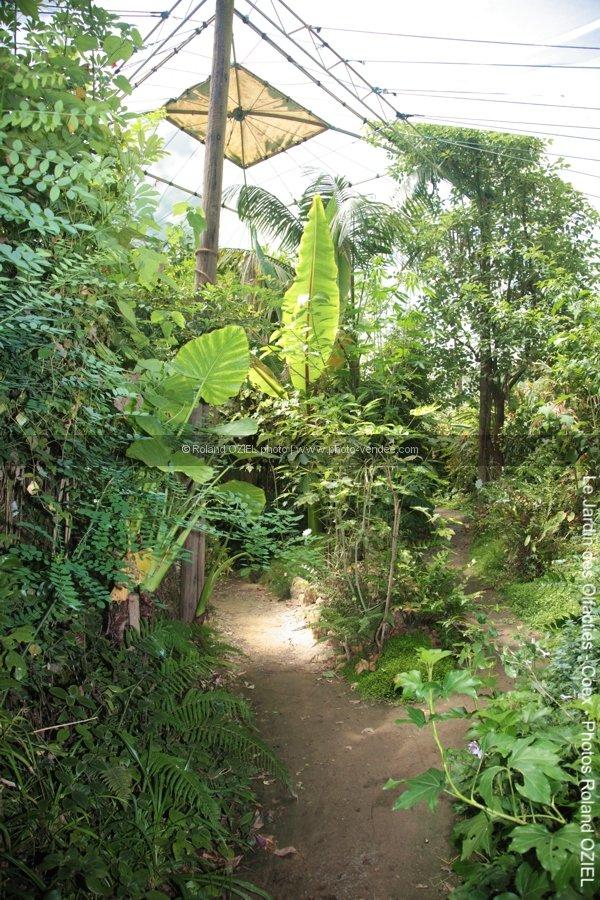 Photo de serre dans jardin des olfacties - Photo Vendée