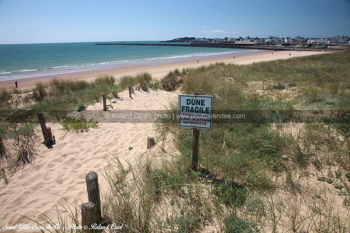 photo chemin menant la plage saint gilles croix de vie photo vend e. Black Bedroom Furniture Sets. Home Design Ideas
