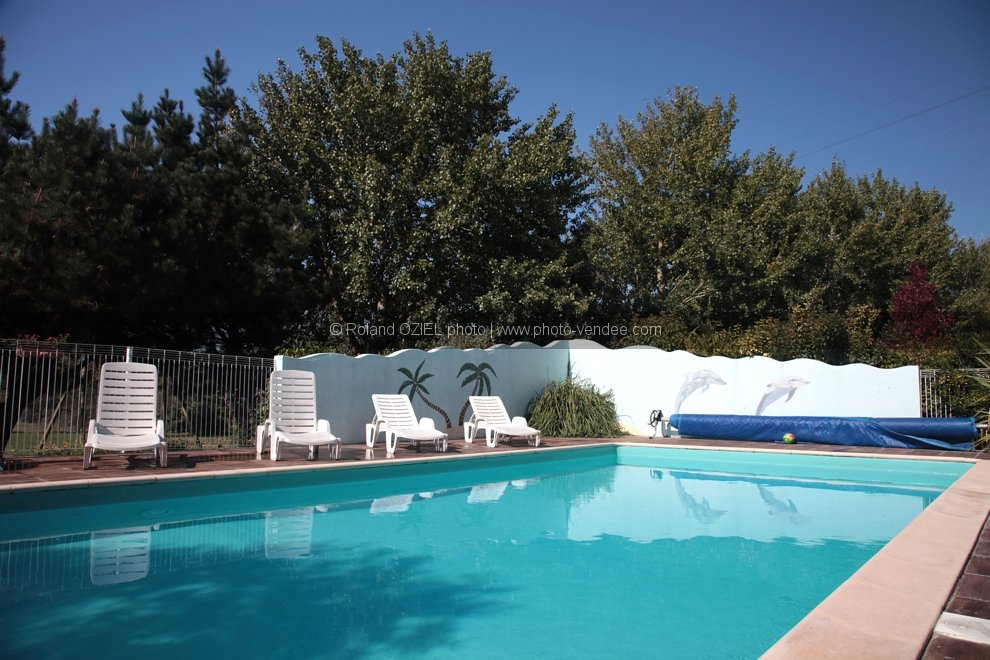 Photo gites avec piscine les sables d 39 olonne photo vend e for Piscine les sables d olonne