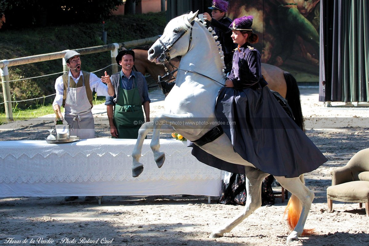 spectacles-equestres-haras-dela-vendee-IMG 1292